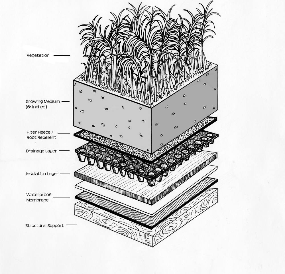 Intensive Green Roofs: A Primer | Green Roof Plan